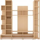 Шкаф комбинированный АМЕЛИ (с ящ. 2-створчатый)